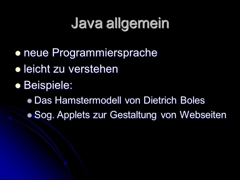 Java allgemein neue Programmiersprache leicht zu verstehen Beispiele: