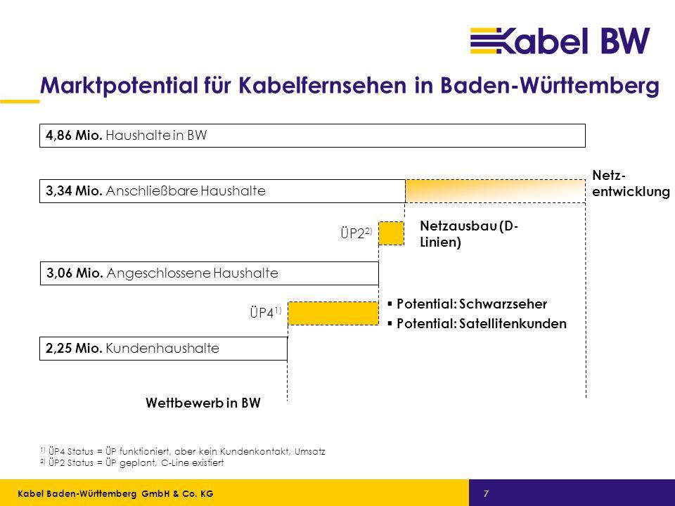 Marktpotential für Kabelfernsehen in Baden-Württemberg