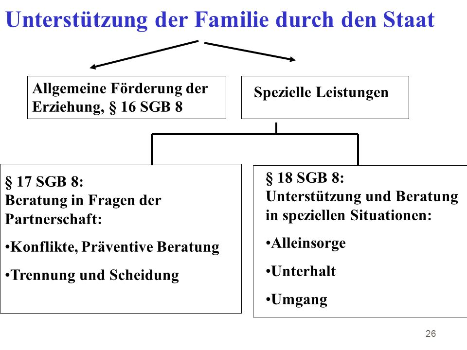 Unterstützung der Familie durch den Staat