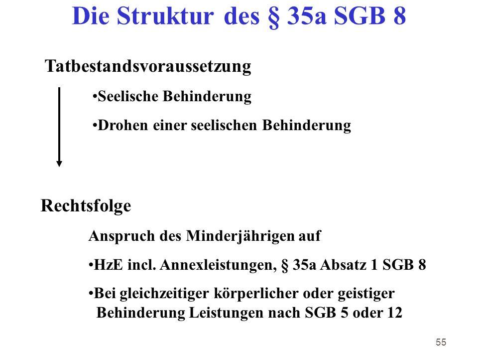 Die Struktur des § 35a SGB 8 Tatbestandsvoraussetzung Rechtsfolge