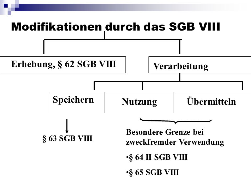 Modifikationen durch das SGB VIII