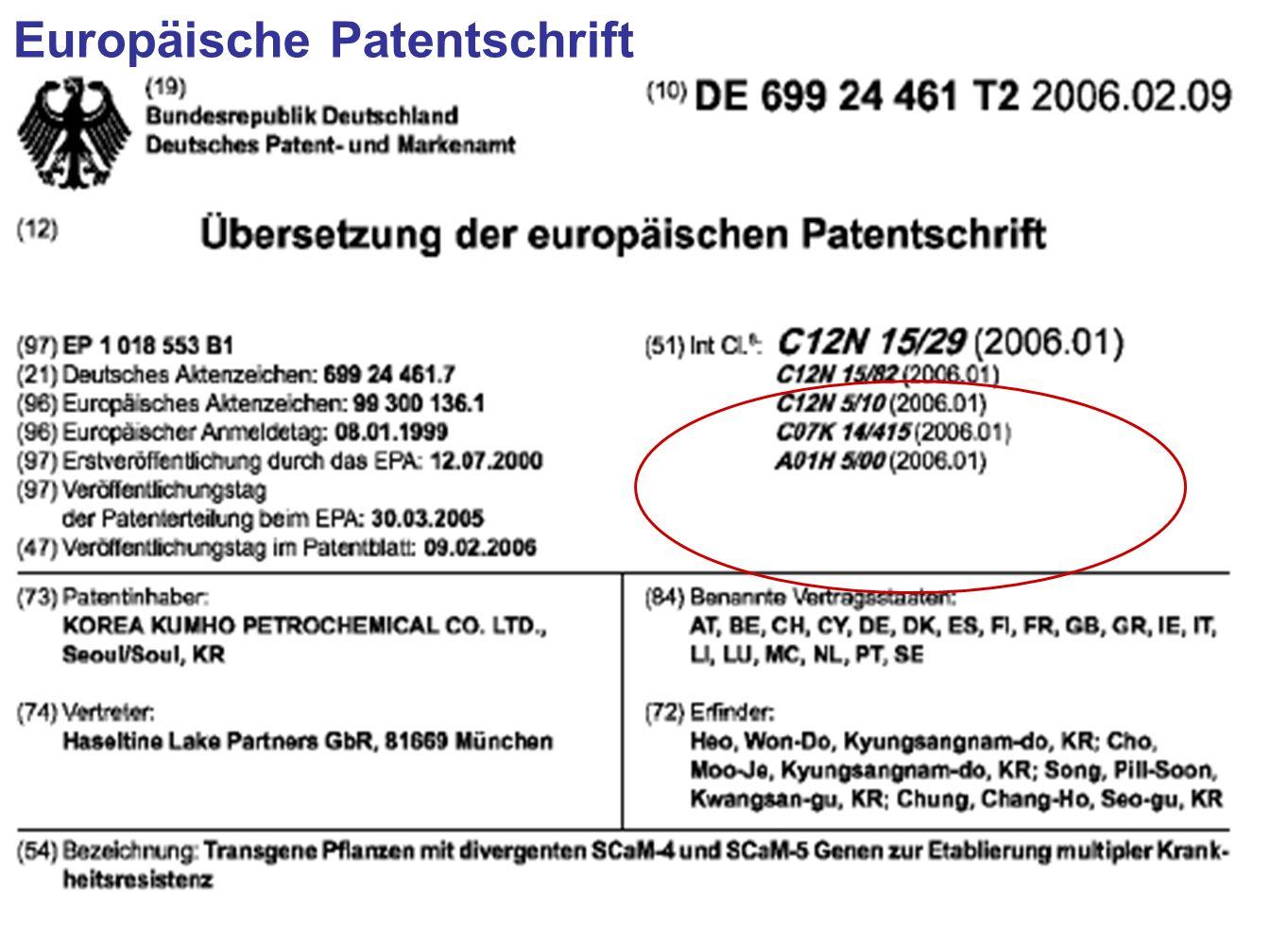 Europäische Patentschrift
