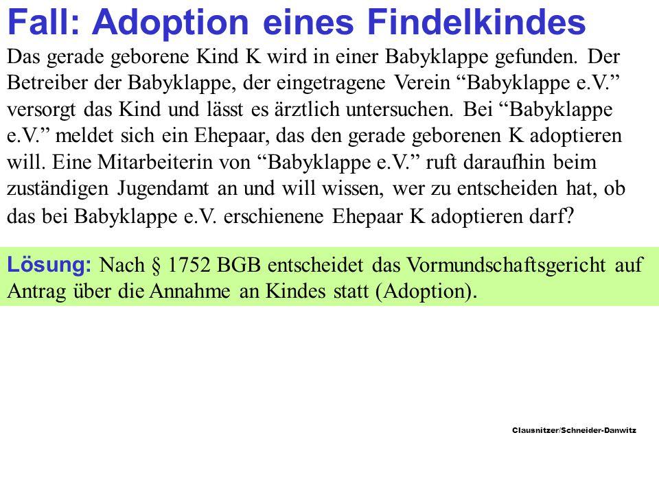 Fall: Adoption eines Findelkindes