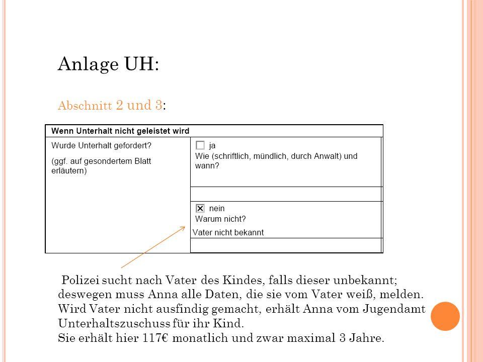 Anlage UH: Abschnitt 2 und 3: