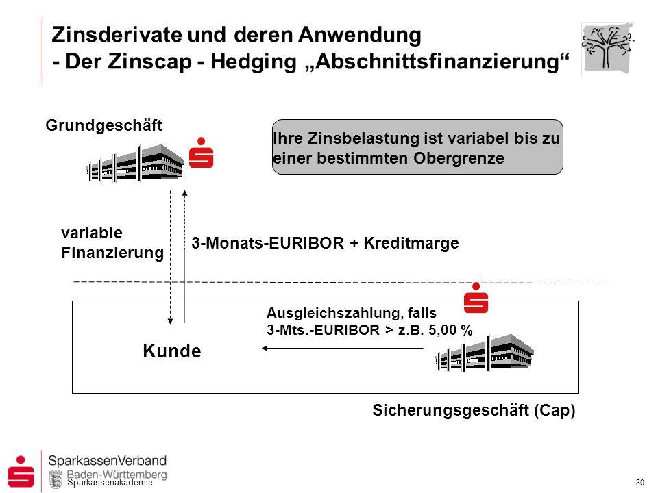 """Zinsderivate und deren Anwendung - Der Zinscap - Hedging """"Abschnittsfinanzierung"""