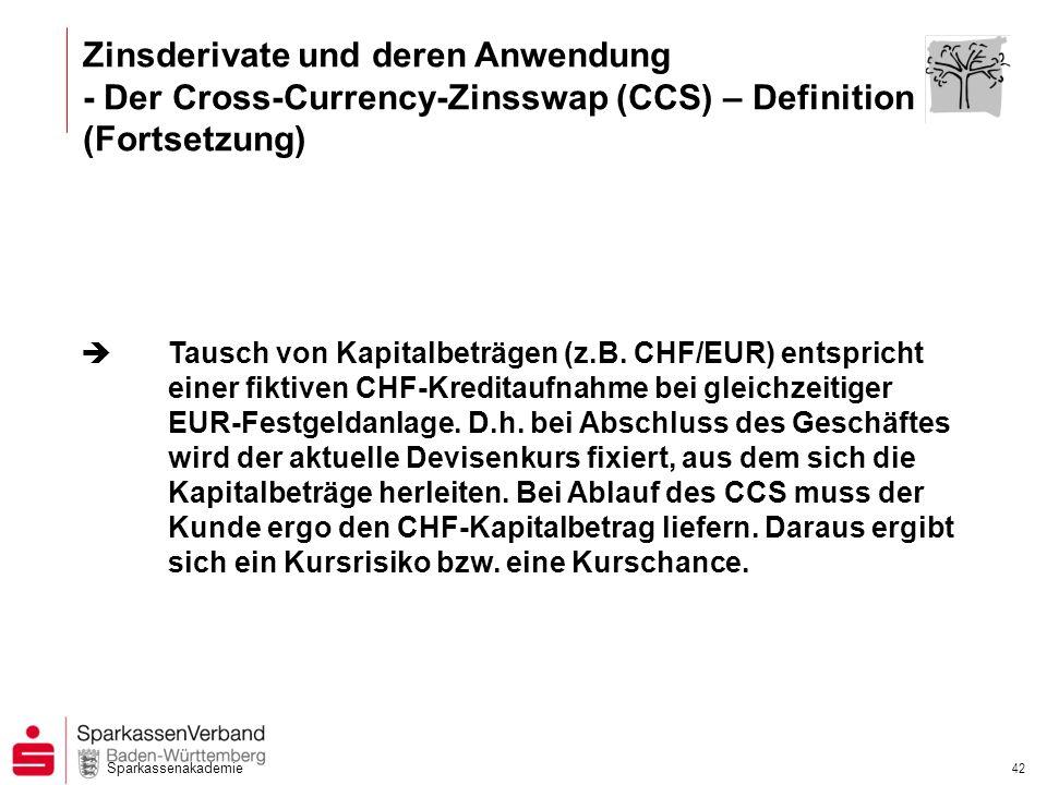 Zinsderivate und deren Anwendung - Der Cross-Currency-Zinsswap (CCS) – Definition (Fortsetzung)