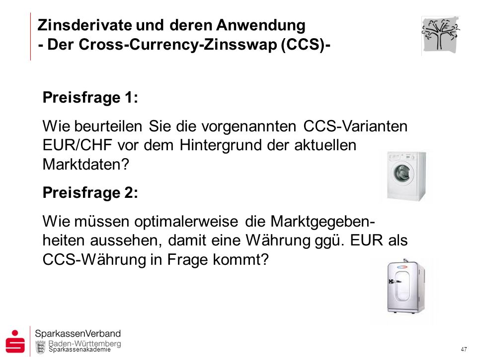 Zinsderivate und deren Anwendung - Der Cross-Currency-Zinsswap (CCS)-