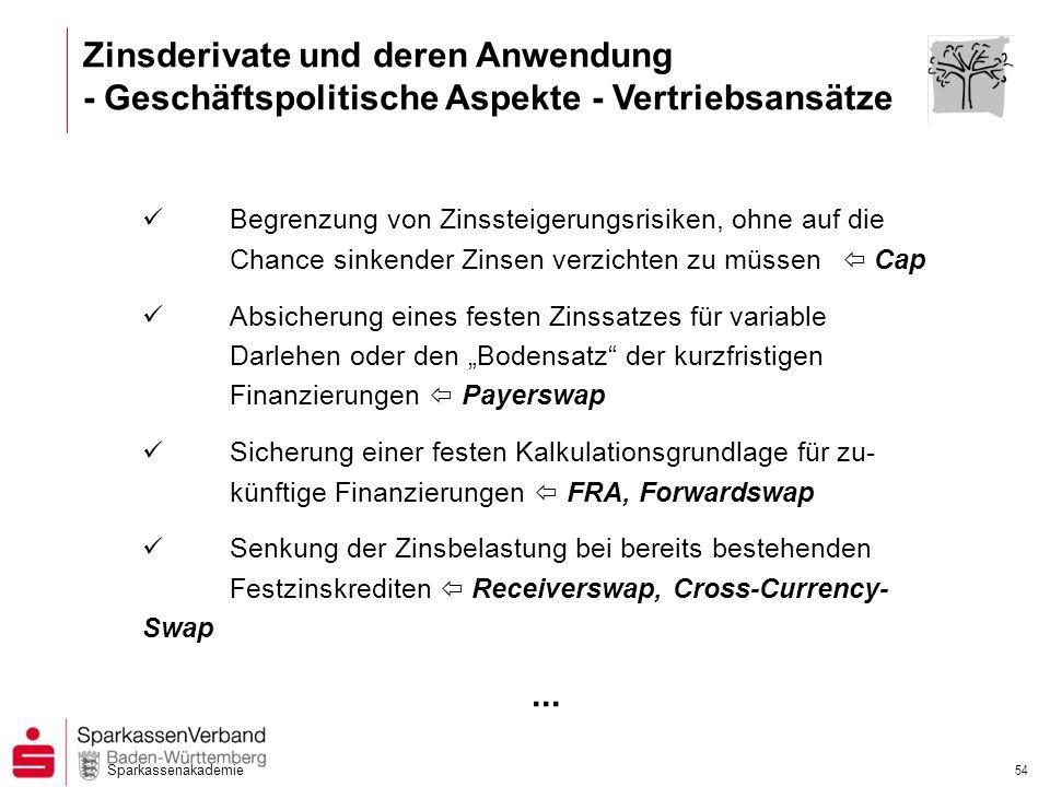 Zinsderivate und deren Anwendung - Geschäftspolitische Aspekte - Vertriebsansätze