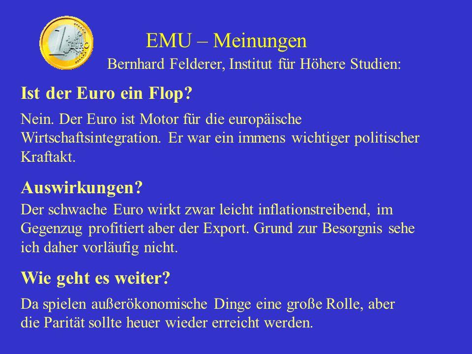 EMU – Meinungen Ist der Euro ein Flop Auswirkungen
