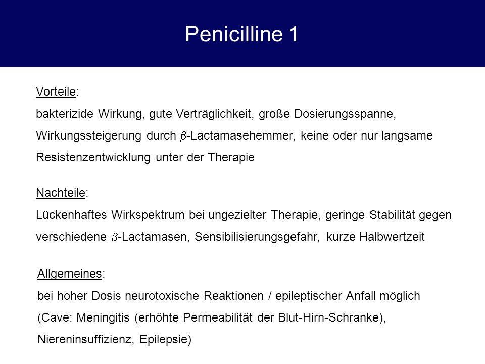 Penicilline 1 Vorteile:
