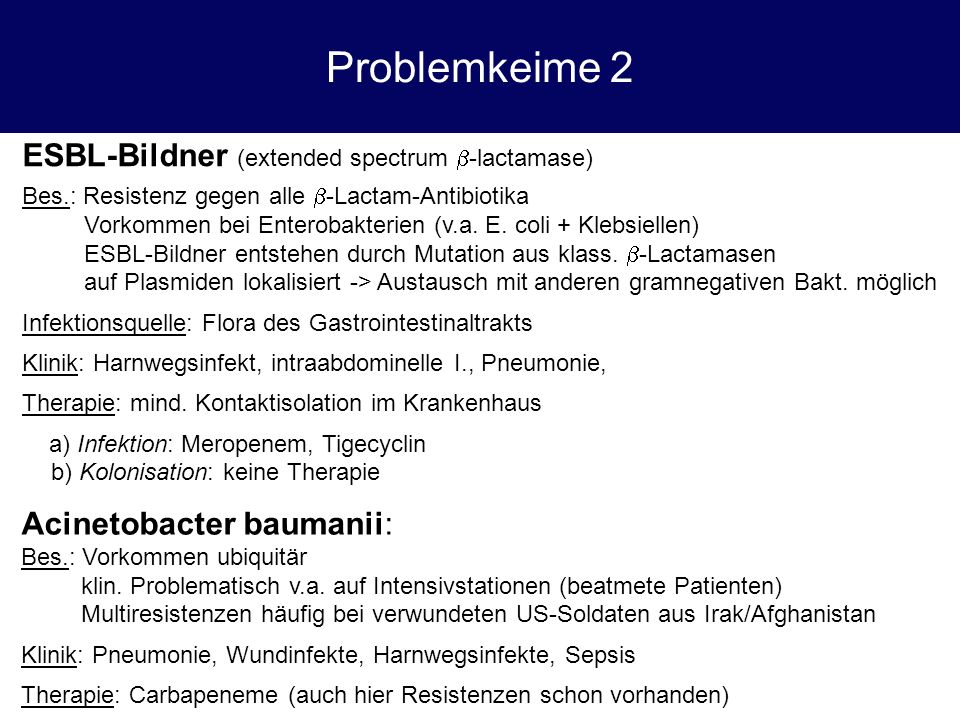 Problemkeime 2 ESBL-Bildner (extended spectrum b-lactamase)