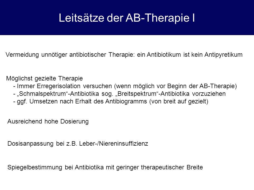 Leitsätze der AB-Therapie I