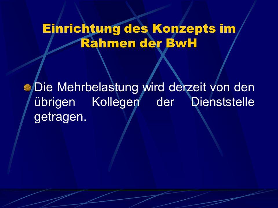 Einrichtung des Konzepts im Rahmen der BwH