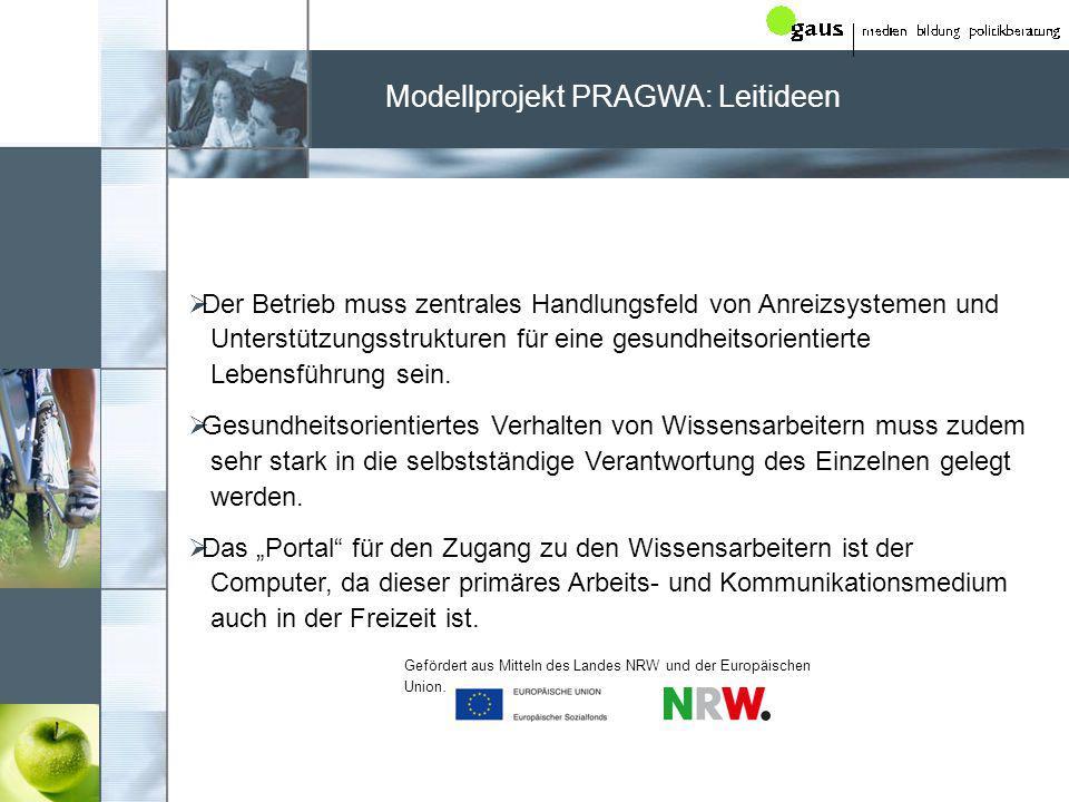 Modellprojekt PRAGWA: Leitideen