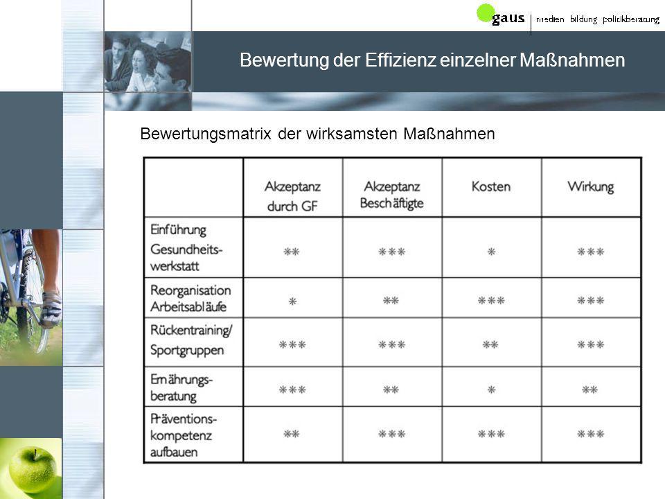Bewertung der Effizienz einzelner Maßnahmen
