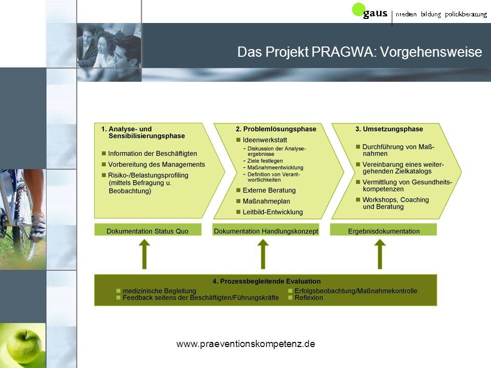 Das Projekt PRAGWA: Vorgehensweise