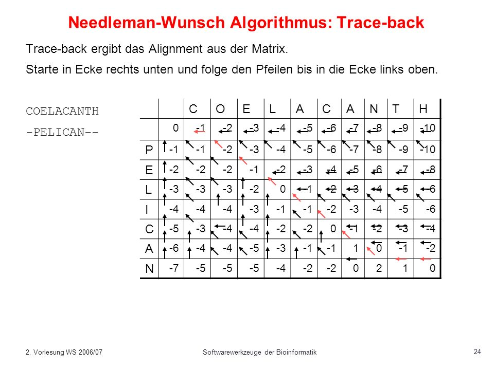 Needleman-Wunsch Algorithmus: Trace-back