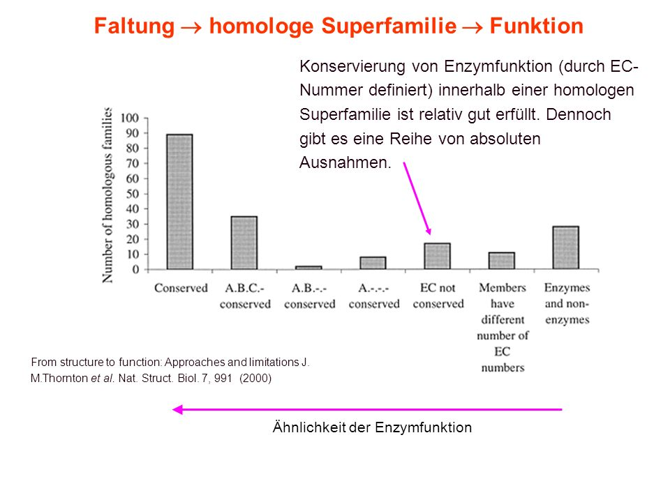 Faltung  homologe Superfamilie  Funktion