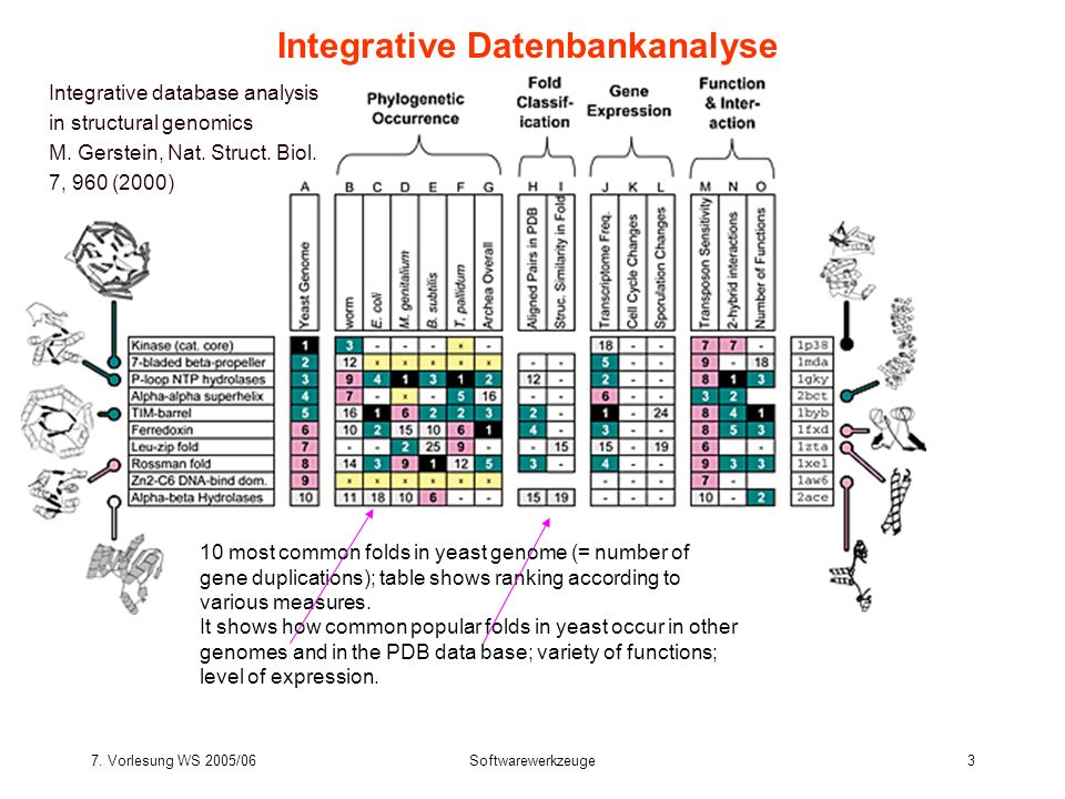 Integrative Datenbankanalyse