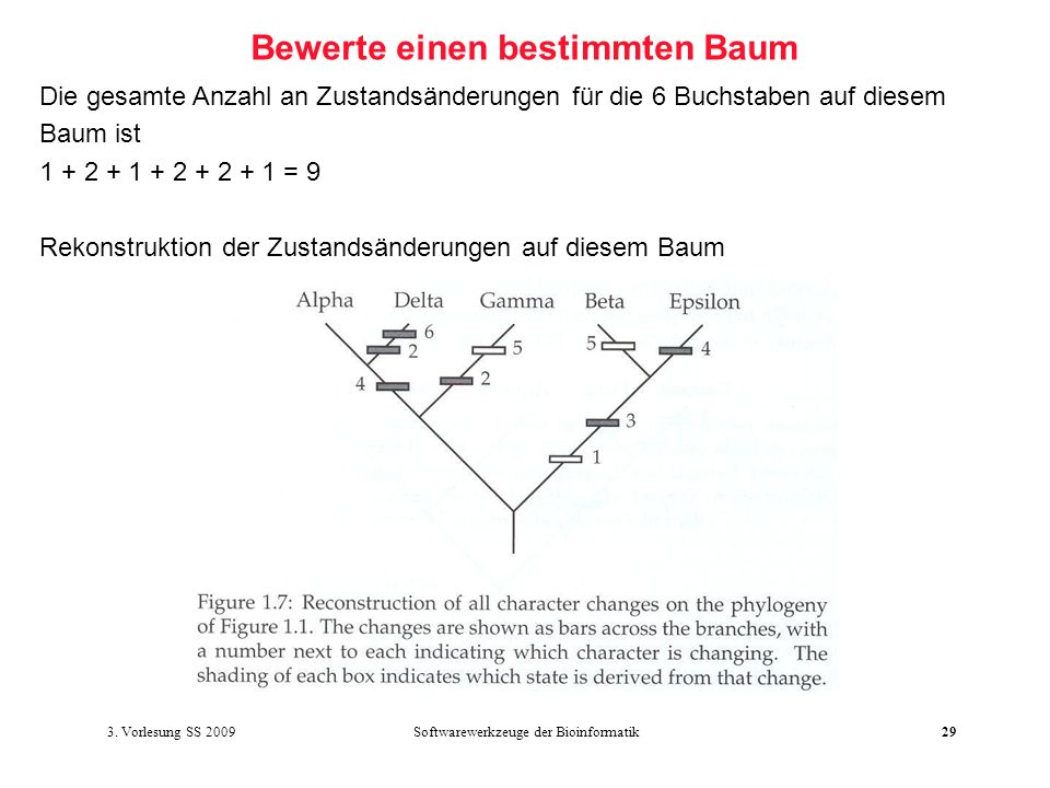 Bewerte einen bestimmten Baum