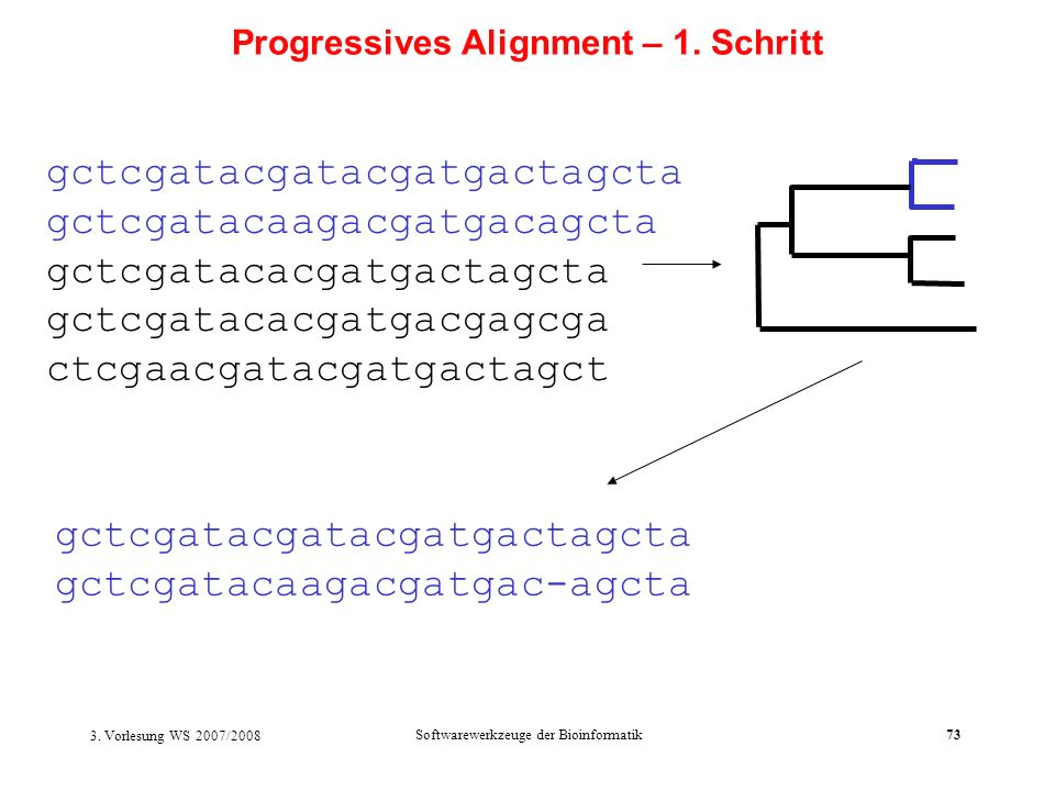 Progressives Alignment – 1. Schritt
