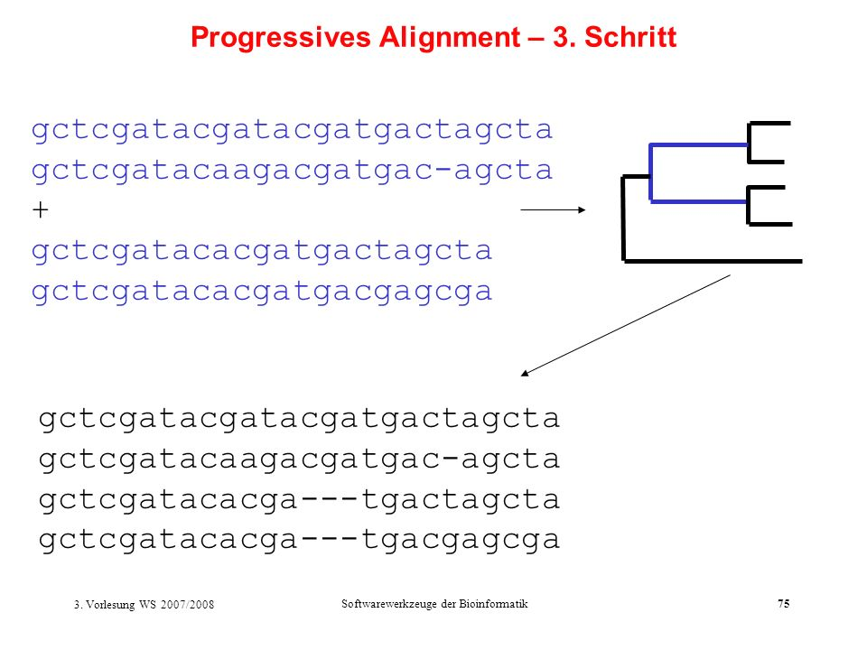 Progressives Alignment – 3. Schritt
