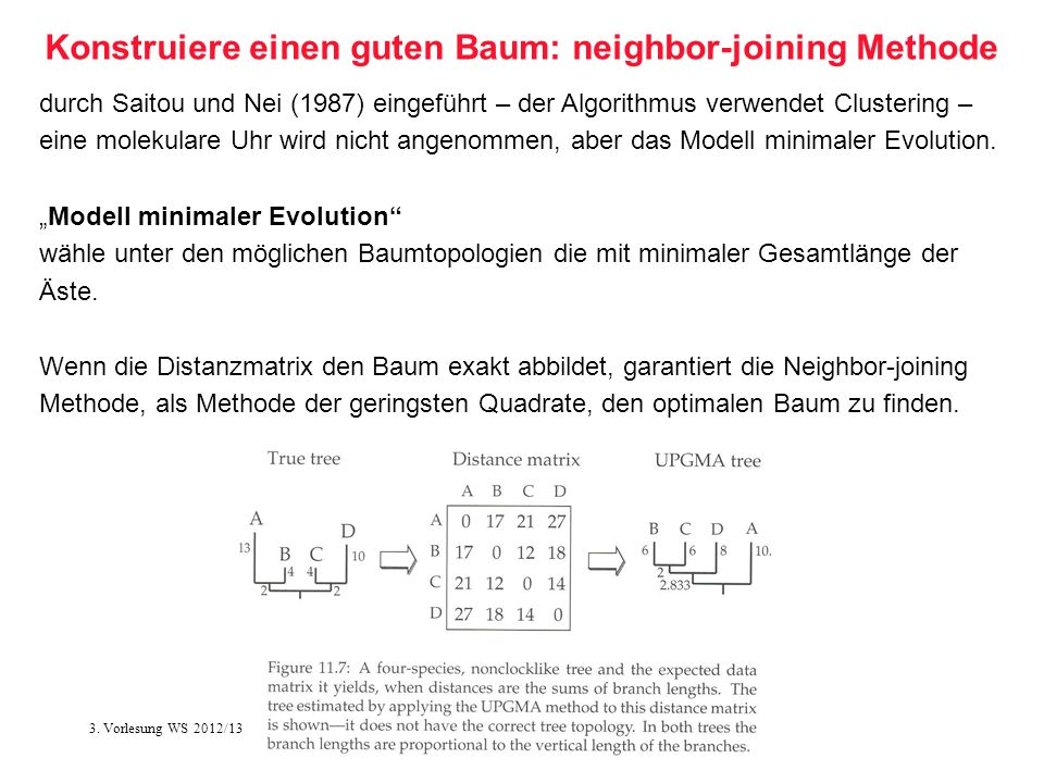 Konstruiere einen guten Baum: neighbor-joining Methode