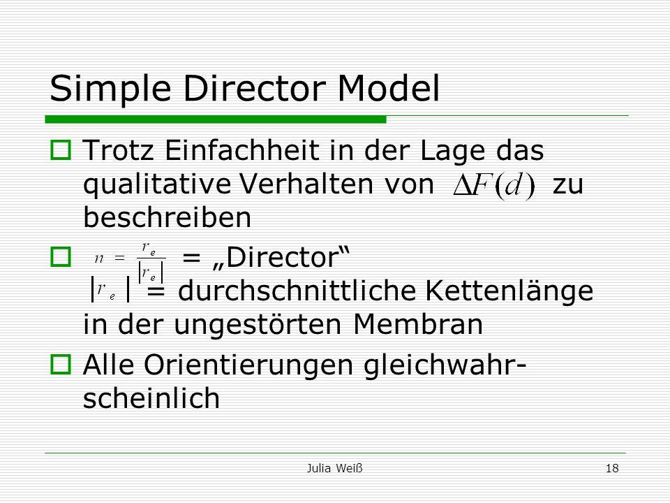 Simple Director Model Trotz Einfachheit in der Lage das qualitative Verhalten von zu beschreiben.