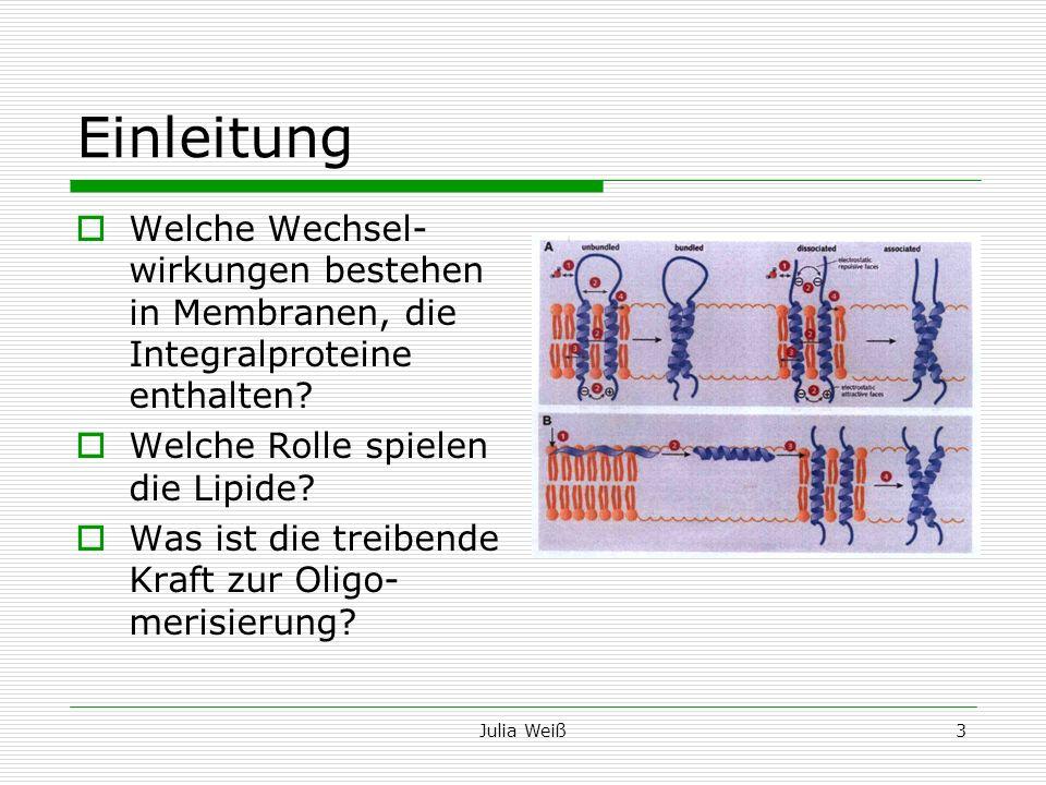 Einleitung Welche Wechsel- wirkungen bestehen in Membranen, die Integralproteine enthalten Welche Rolle spielen die Lipide