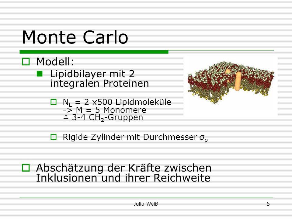 Monte Carlo Modell: Lipidbilayer mit 2 integralen Proteinen.