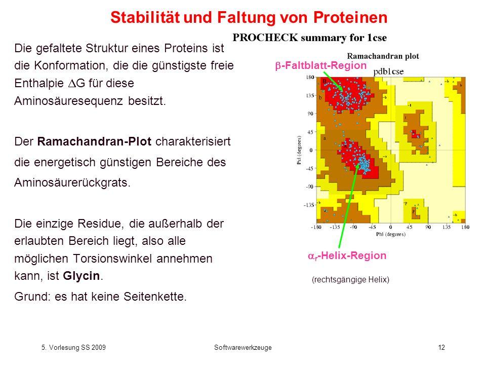 Stabilität und Faltung von Proteinen