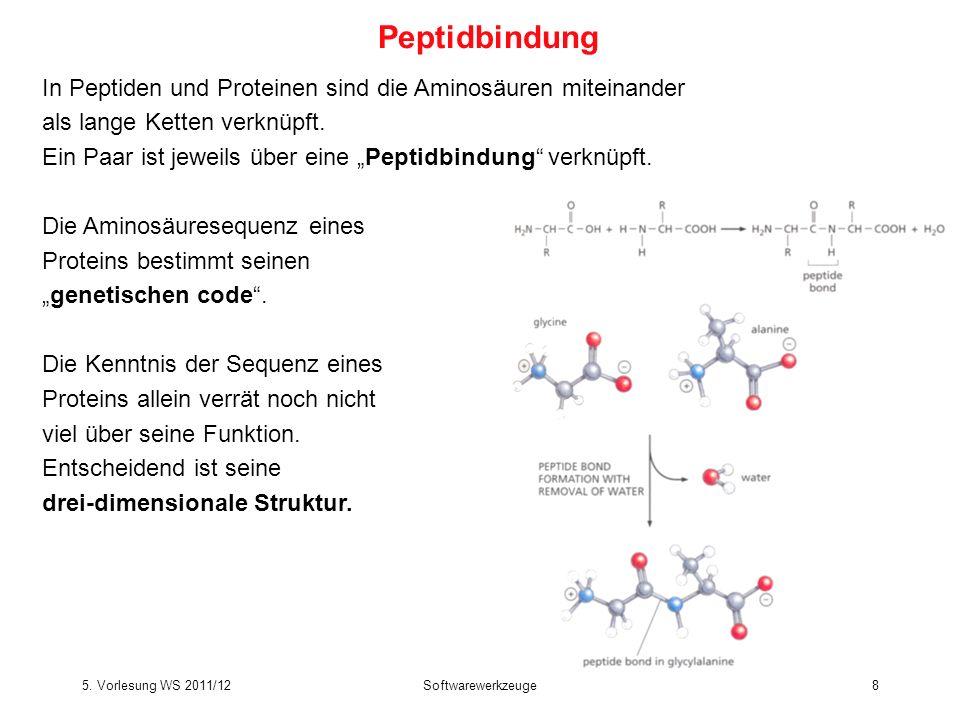Peptidbindung In Peptiden und Proteinen sind die Aminosäuren miteinander. als lange Ketten verknüpft.