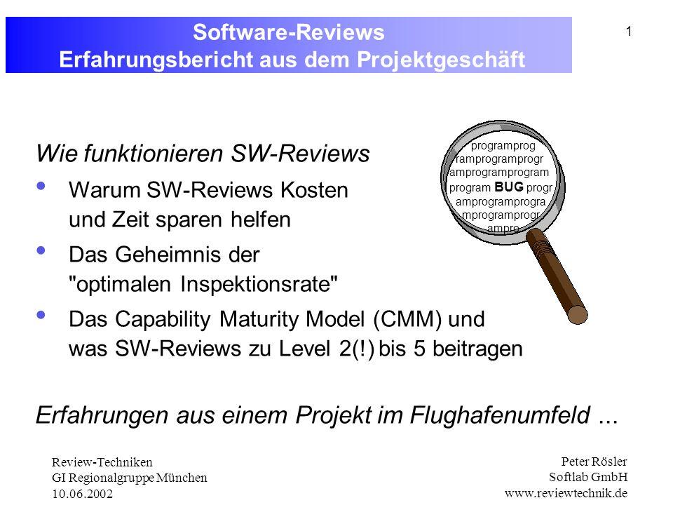 Software-Reviews Erfahrungsbericht aus dem Projektgeschäft