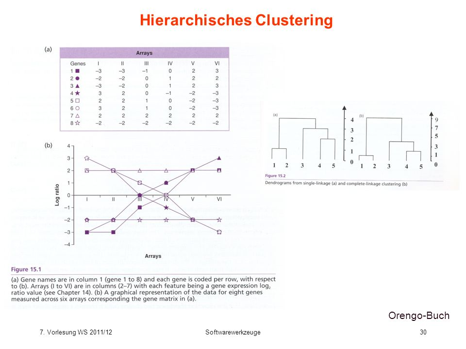 Hierarchisches Clustering