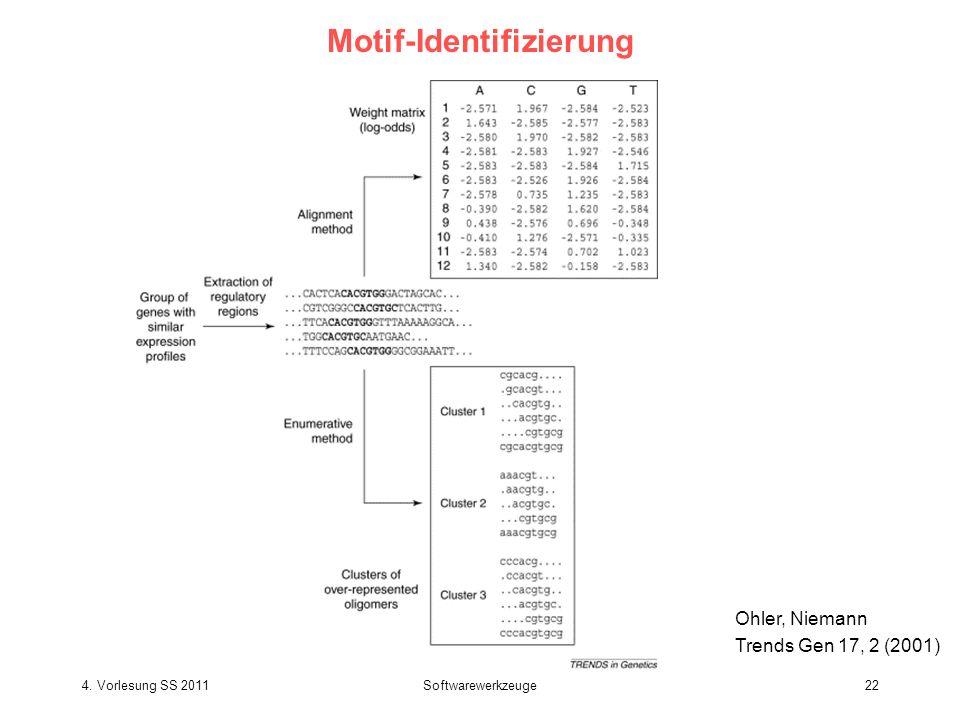 Motif-Identifizierung