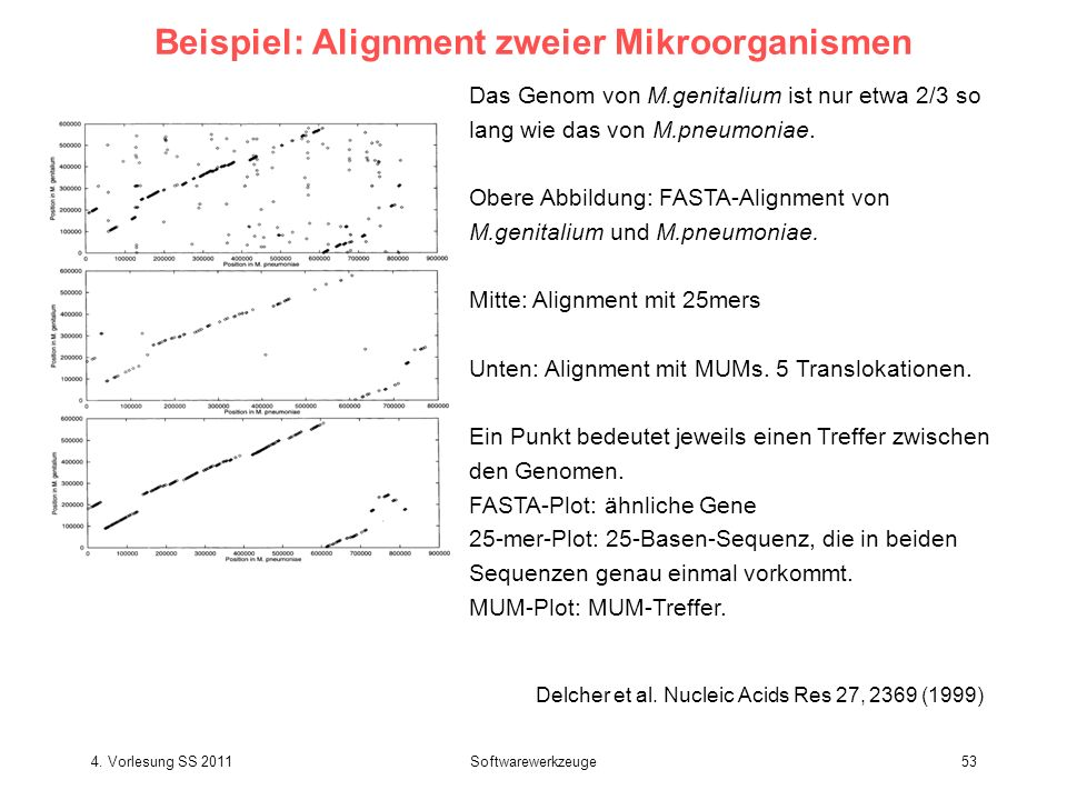 Beispiel: Alignment zweier Mikroorganismen