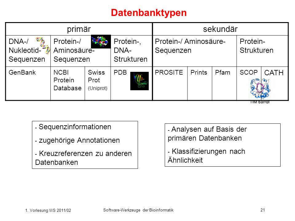Datenbanktypen primär sekundär DNA-/ Nukleotid-Sequenzen