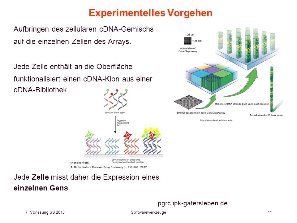 Experimentelles Vorgehen
