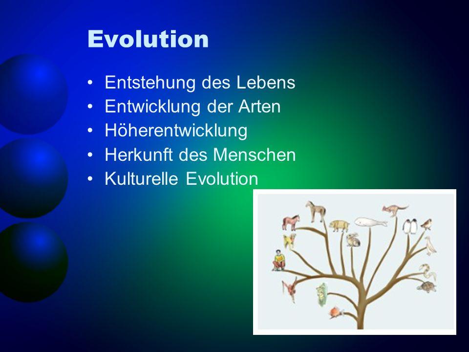Evolution Entstehung des Lebens Entwicklung der Arten Höherentwicklung
