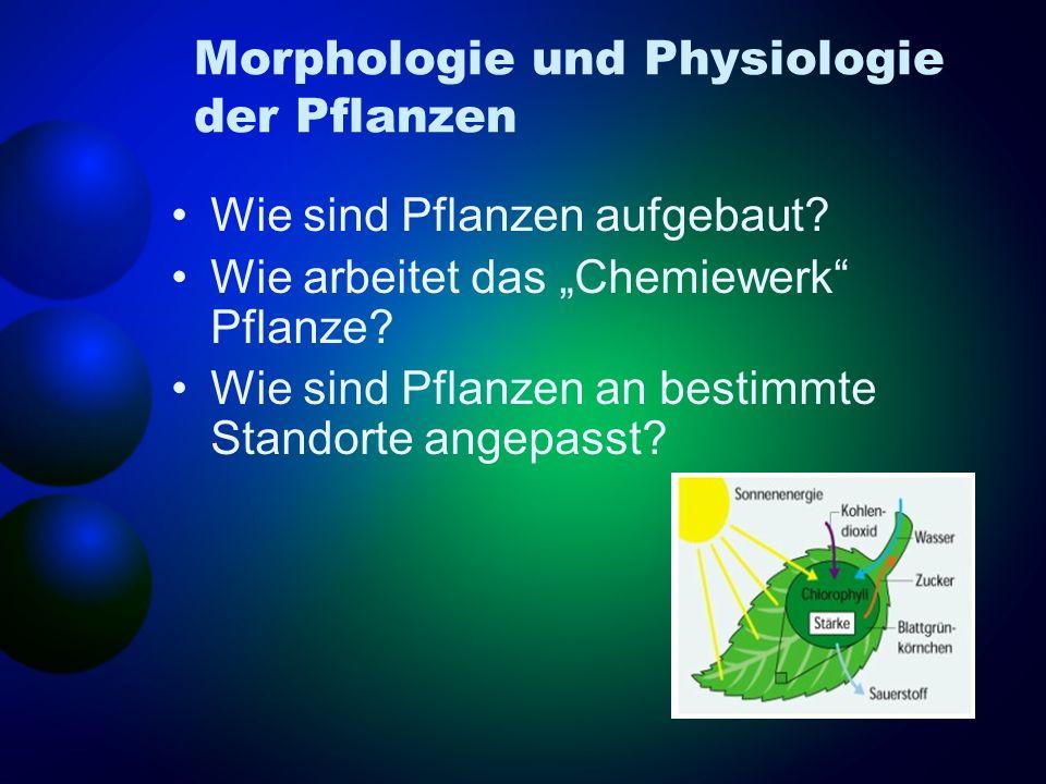 Morphologie und Physiologie der Pflanzen
