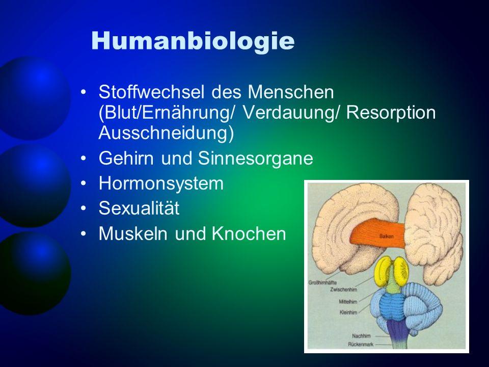 Humanbiologie Stoffwechsel des Menschen (Blut/Ernährung/ Verdauung/ Resorption Ausschneidung) Gehirn und Sinnesorgane.