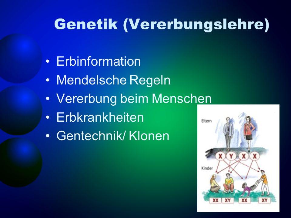 Genetik (Vererbungslehre)