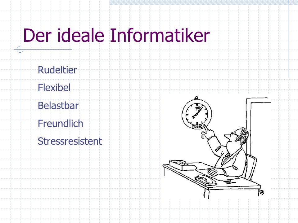 Der ideale Informatiker