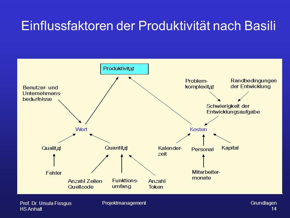Einflussfaktoren der Produktivität nach Basili
