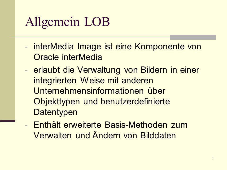 Allgemein LOB interMedia Image ist eine Komponente von Oracle interMedia.