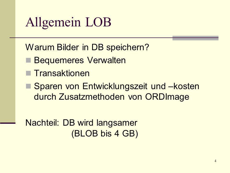 Allgemein LOB Warum Bilder in DB speichern Bequemeres Verwalten