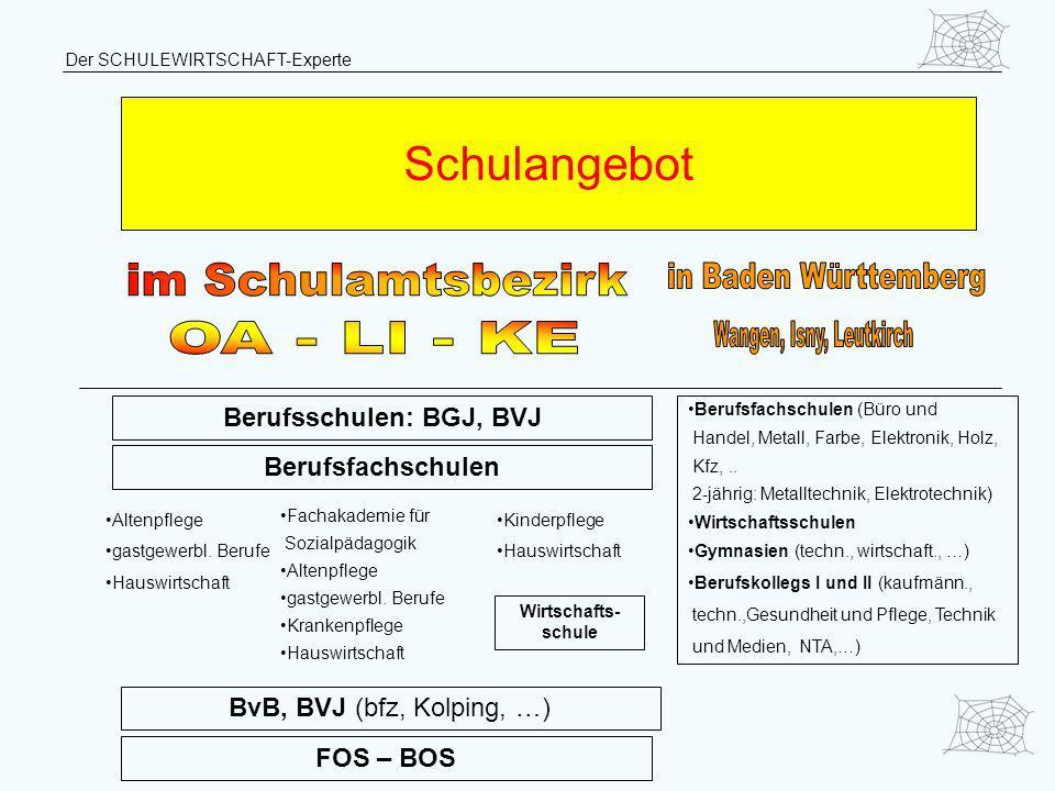 Berufsschulen: BGJ, BVJ