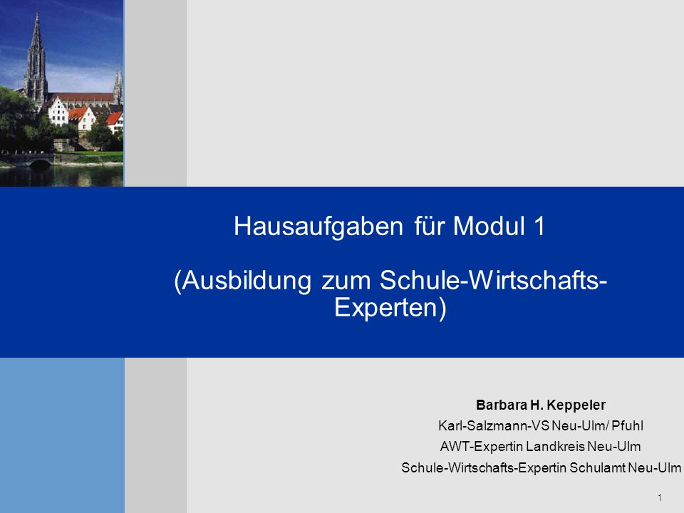 Hausaufgaben für Modul 1 (Ausbildung zum Schule-Wirtschafts-Experten)
