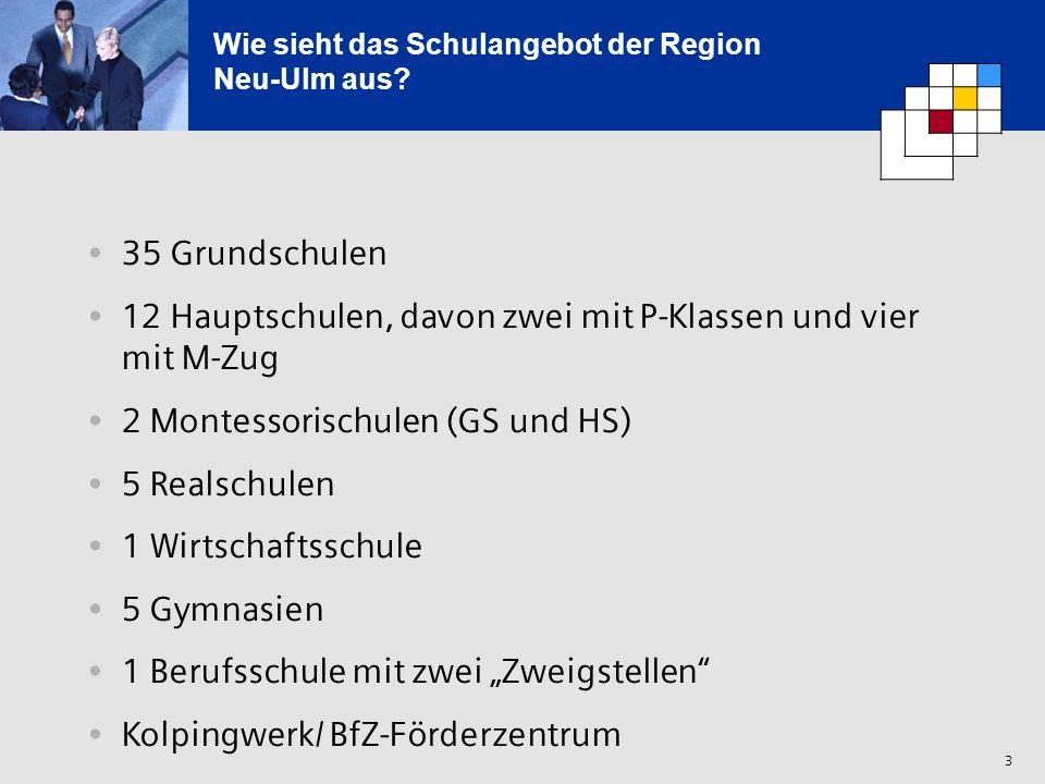 Wie sieht das Schulangebot der Region Neu-Ulm aus