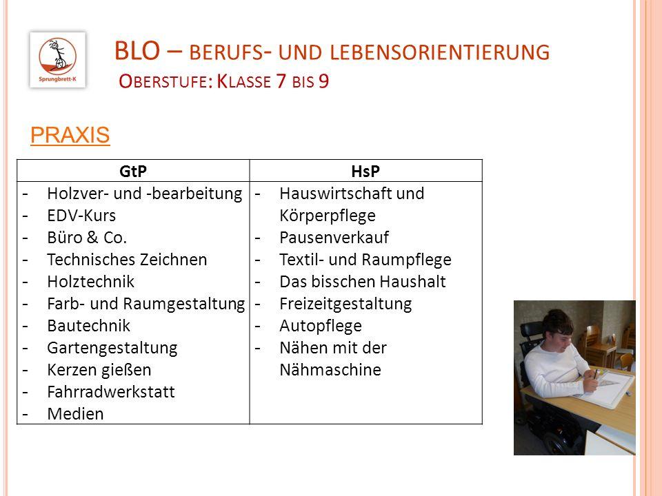 BLO – berufs- und lebensorientierung Oberstufe: Klasse 7 bis 9